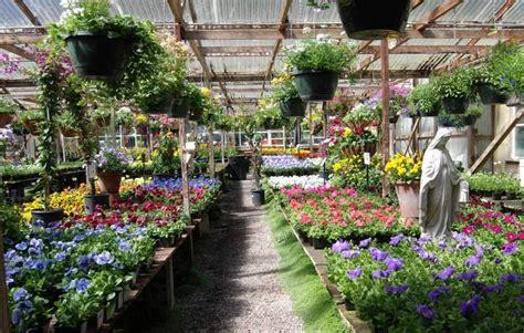 plant nurseries   peninsula  start  spring