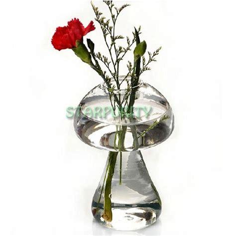 vaso idroponico forma a fungo di vetro della pianta fiore vaso