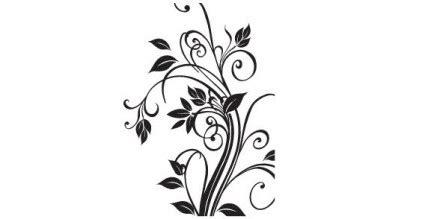 graphics design vector cdr free download floral free vector flor de vetor free vector download gr 225 tis