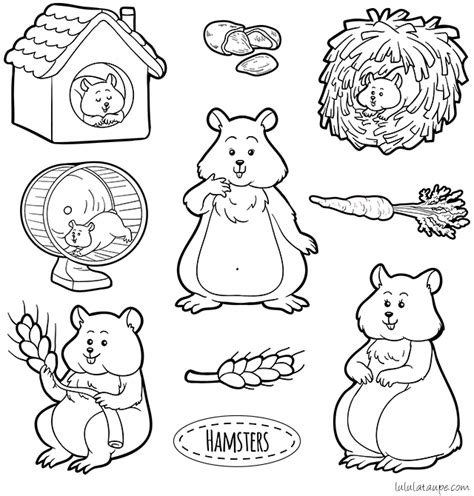 Taupe The Color by Coloriage 224 Imprimer Des Hamsters Lulu La Taupe Jeux