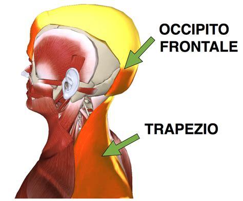 dolore alla della testa mal di testa lato destro o sinistro quando la causa 232