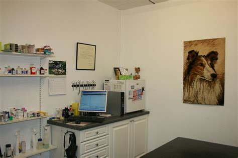 park consulting rooms facilities shedden vets
