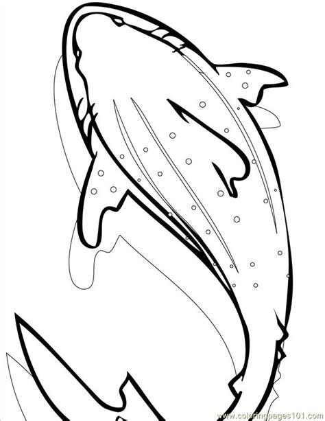 whale coloring pages pdf whale shark ink coloring page free shark coloring pages