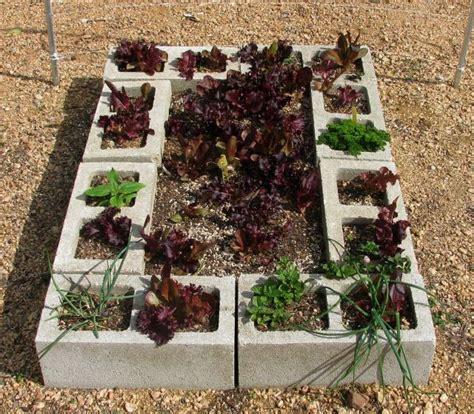 cinder block garden bed on a side note cinder block raised garden