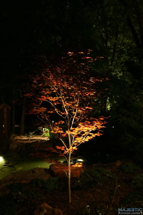 fort worth tx dallas tx landscape lighting gallery