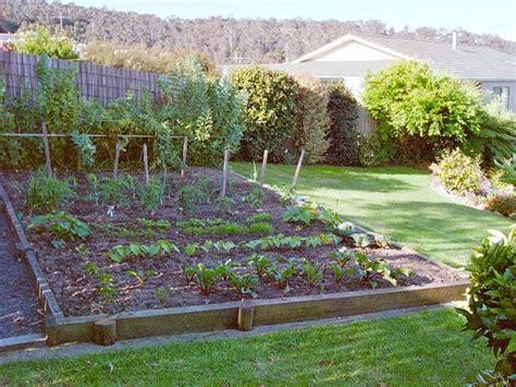 small garden  vegetables flowers  fruit  ideas