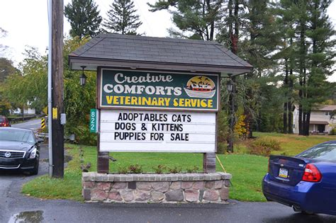 Creature Comforts Veterinary Hospital by Clinic Tour In Saylorsburg Pa Creature Comforts
