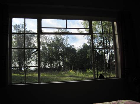 view from bedroom window irena s south african journey quot and i will walk with you