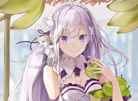 subaru and emilia married le light novel re zero vient de trouver son 233 diteur