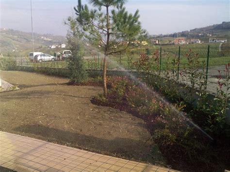 progettazione irrigazione giardino impianto di irrigazione pavia andrea bariani giardini