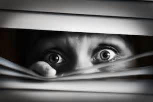 Window Blinds Sales The 5 Scariest Company Initiatives That Are Actually Not