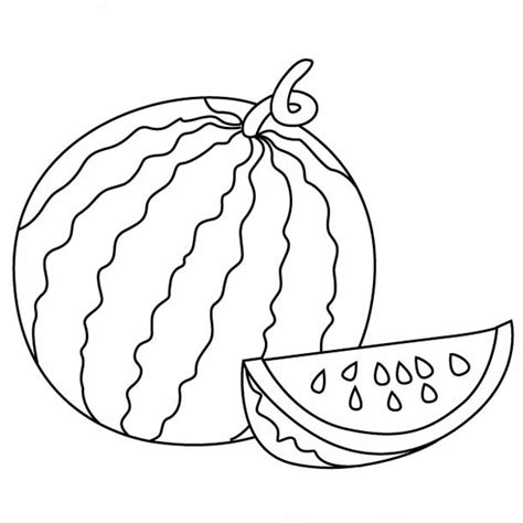 watermelon clipart line drawing pencil and in color