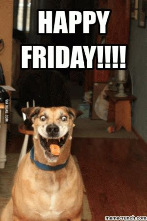 Happy Friday Meme Funny - happy friday funny pictures kappit