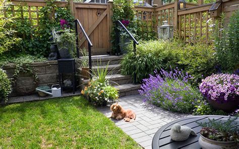 gardening ideas for small spaces gardening for small spaces