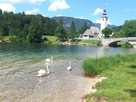 European Style Houses luxury in slovenia s triglav national park luxury travel