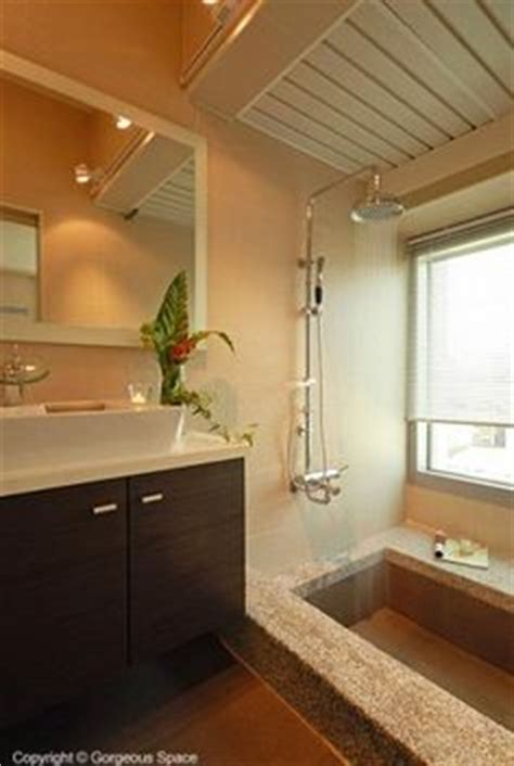 step down bathtub shower ideas on pinterest stand up showers showers and tubs