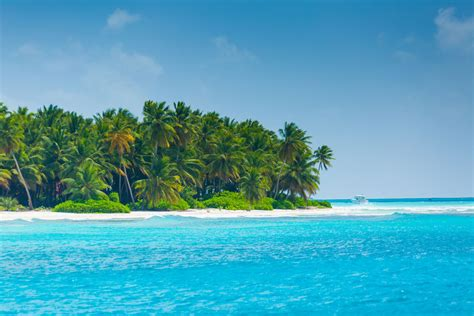 Find In Republic Sleep In The Location In Republic And Visit Saona Island With Us