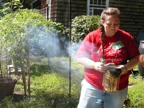 backyard beekeepers association the buzz on beekeeping in fairfield county video patch