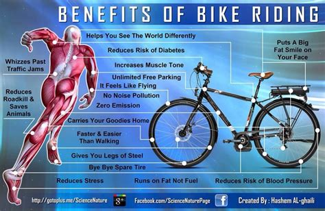 8 Benefits Of A Bike by White Space The Benefits Of Cycling