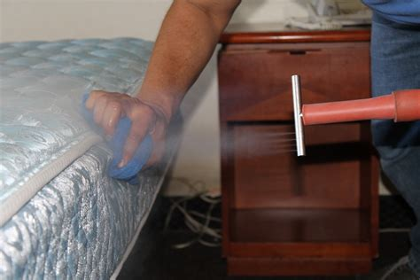 steam cleaner for bed bugs 5 simple home remedies to eliminate bed bugs