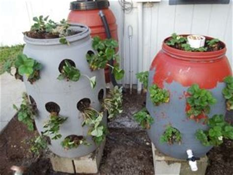 Strawberry Barrel Planter by Strawberry Barrel Planters Gardening