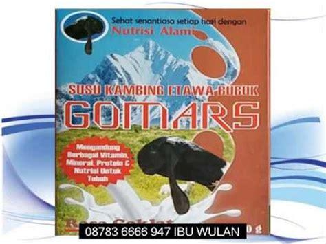 Termurah Gomars Kambing Etawa Gomars harga kambing etawa gomars di lingga