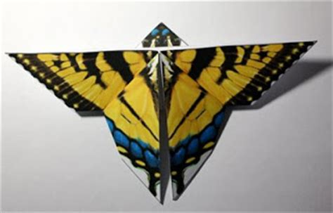 Origami Swallowtail Butterfly - two tailed swallowtail butterfly origami arizona state