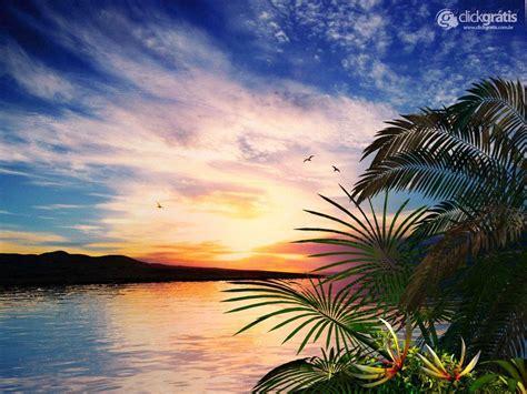 imagenes raras da natureza papel de parede paisagem tropical