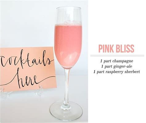 25  best ideas about Pink champagne punch on Pinterest