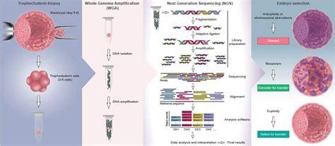 art design genetic screens home dantes design
