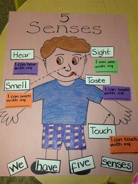 activities kindergarten class 55 best five senses images on pinterest 5 senses