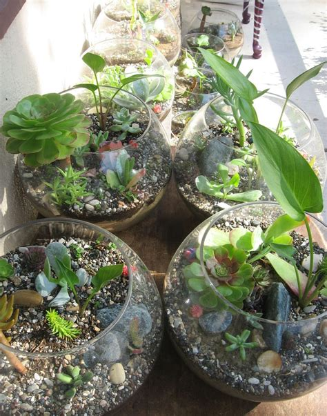 succulent decor 06 happywedd