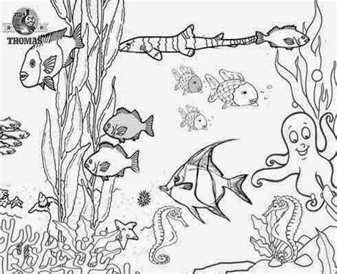 coloring pages of animals in their habitats mrs berenice s art room drawing animals