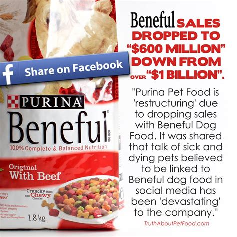 food brands to avoid heads up to avoid blue buffalo brand pet food dogperday puppy pictures
