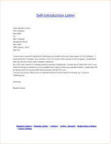 Resume Introduction Sample resume intro resume format download pdf