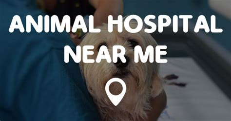 hospital near me animal hospital near me points near me