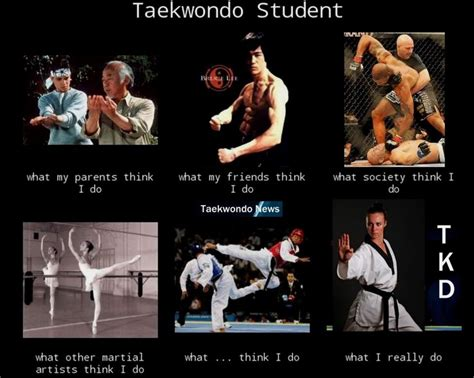 Taekwondo Memes - accurate tkd is not as dangerous a other martial arts