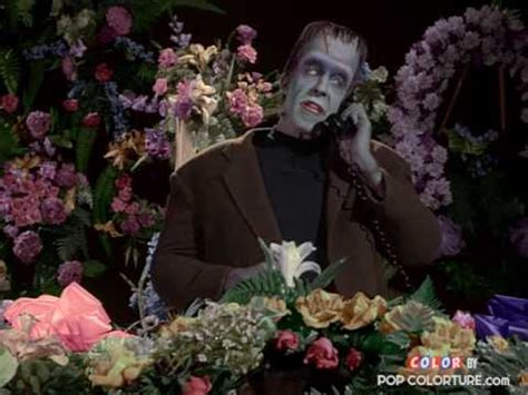 the munsters in color the munsters herman s layaway plan in color pop