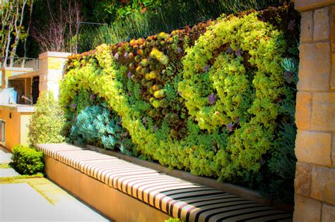 Living Walls Traditional Landscape Los Angeles By How To Make A Green Wall Garden