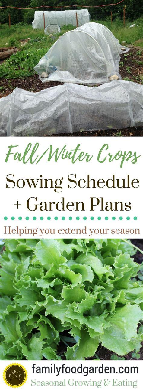 top 25 best winter vegetable gardening ideas on