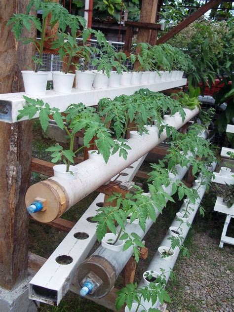 Hydroponics Garden by Diy Hydroponic Gardening Systems Images