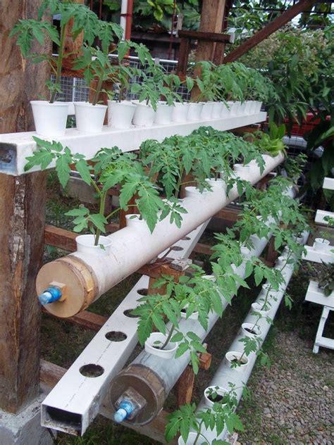 Hydroponics   DIY: Garden; Compost & Hydroponics   Pinterest