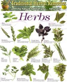 Indoor Herbal Garden - list medicinal plants herbal medicinal plants plant spirit medicine pinterest medicinal