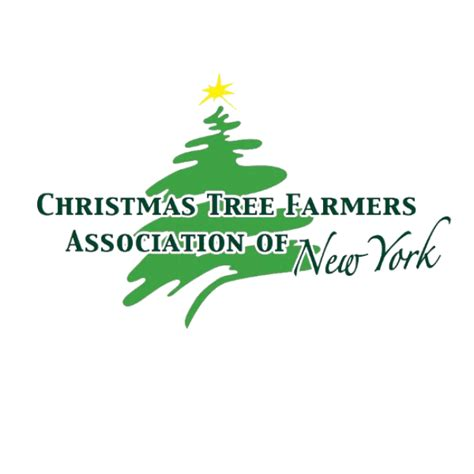 christmas tree farms in greater rochester ny kids out