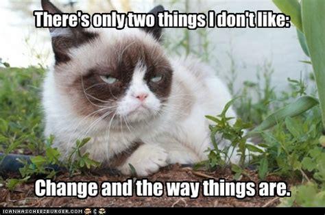Chagne Meme - monday no tuesday melissa mcclone
