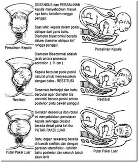 9 Bulan Yang Menakjubkan Di Rahim Bunda Solusi Buku konsultasi kehamilan tips ibu pending bunda