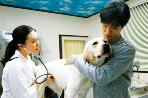 cerita hot mengharukan selain hachiko 5 film jepang tentang anjing ini juga