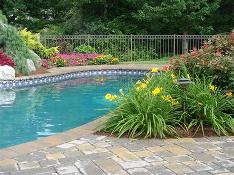some low debris plants for around pool back yard ideas