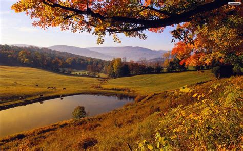 fall landscape fall landscape wallpapers wallpaper cave