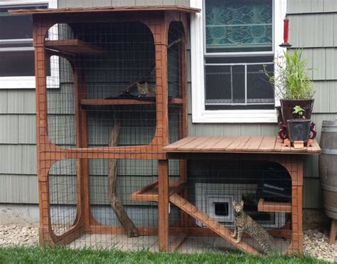 17 best ideas about outdoor cat enclosure on